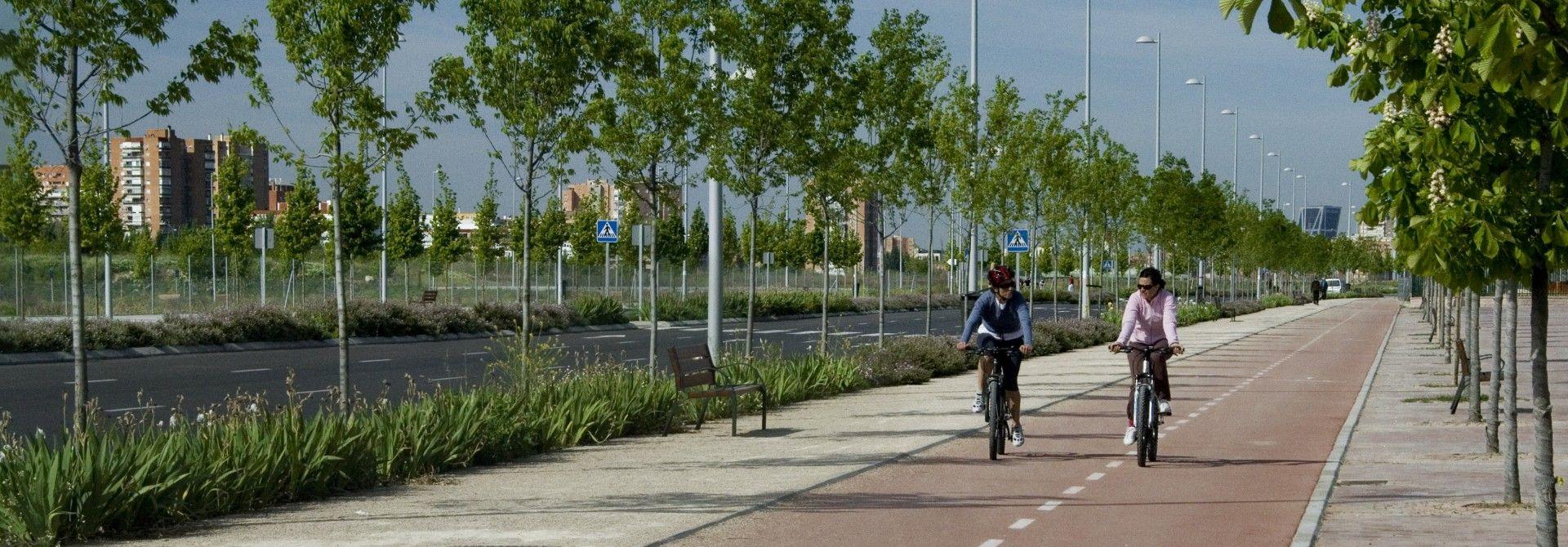 Las zonas verdes de Valdebebas<br/> protagonistas del deporte en Madrid