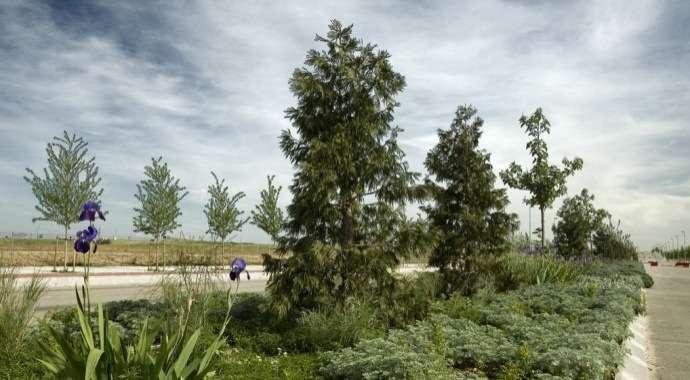 Nota informativa de la evolución del sistema de gestión ambiental de la Junta de Compensación Parque de Valdebebas