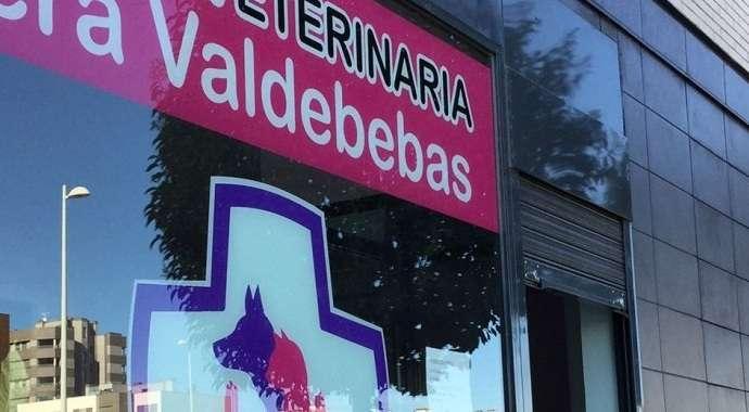 La clínica Vera Valdebebas impartirá una charla para ayudar a la educación de los cachorros