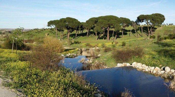 Parque Forestal Valdebebas: planes en verano